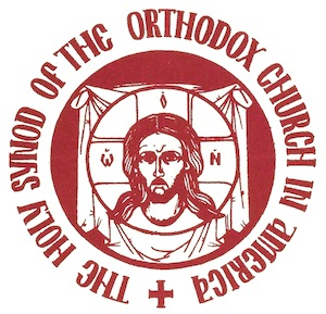 Holy Synod of Bishops issues statement on recent tragic events in Charlottesville, VA